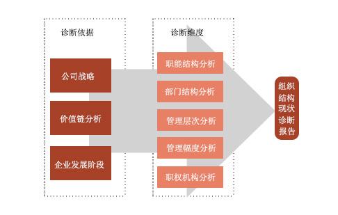简述组织设计的步骤