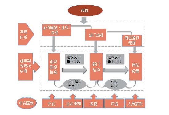 确定企业的组织职能结构
